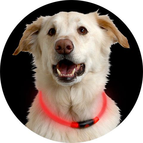 NITE IZE - NITEHOWL® LED SAFETY NECKLACE, Red