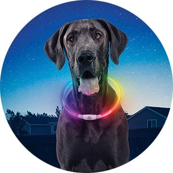 NITE IZE - NITEHOWL RECHARGEABLE LED SAFETY NECKLACE - DISC-O